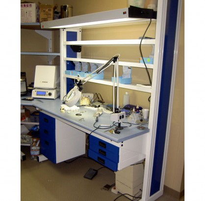 C2 Dental Lab Bench