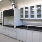 Lab wall cabinet